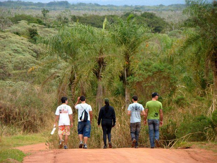 O Ecoturismo contribui com o desenvolvimento econômico da região