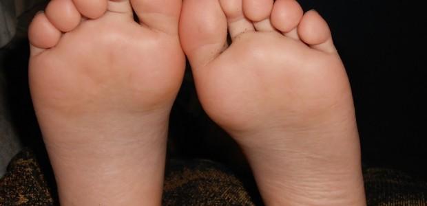 anatomia pés reflexoterapia