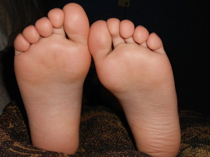 Anatomia pés principais zonas reflexoterapia