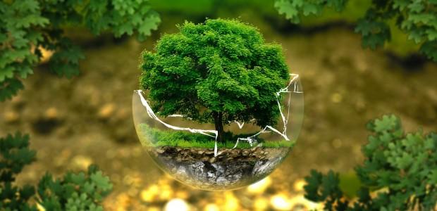 Resultado de imagem para progresso sustentável