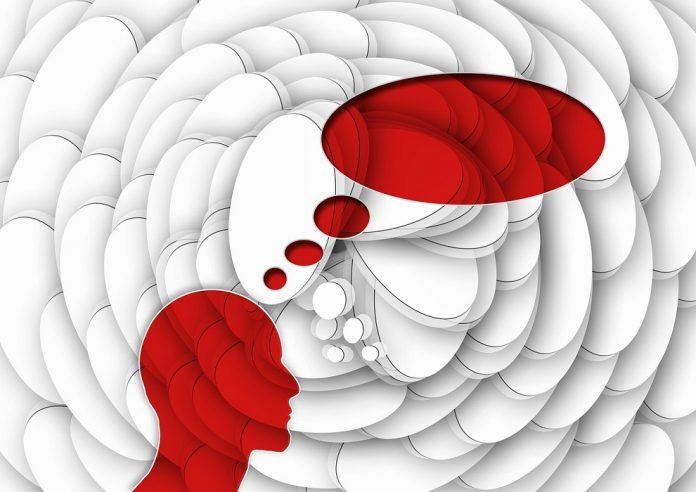 Entendendo funcionamento nosso cérebro