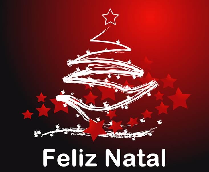 Desejamos A Você Um Feliz Natal E Um Próspero Ano Novo