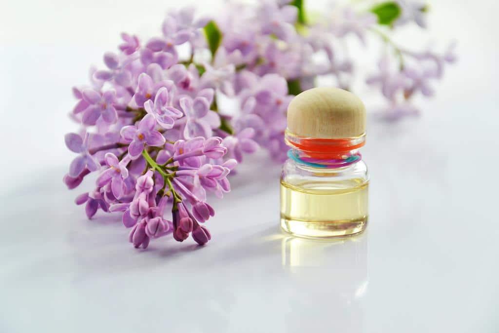 óleo de alfazema também é um óleo essencial para ansiedade