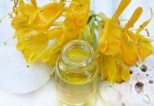 o que é e para que serve a aromaterapia
